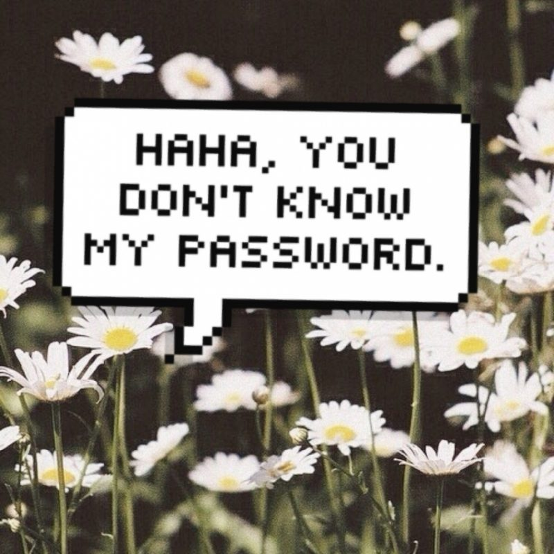 10 Latest You Don't Know My Password Wallpaper FULL HD 1080p For PC Background 2020 free download wallpaper you dont know my password ideas wallpaper photography hd 800x800