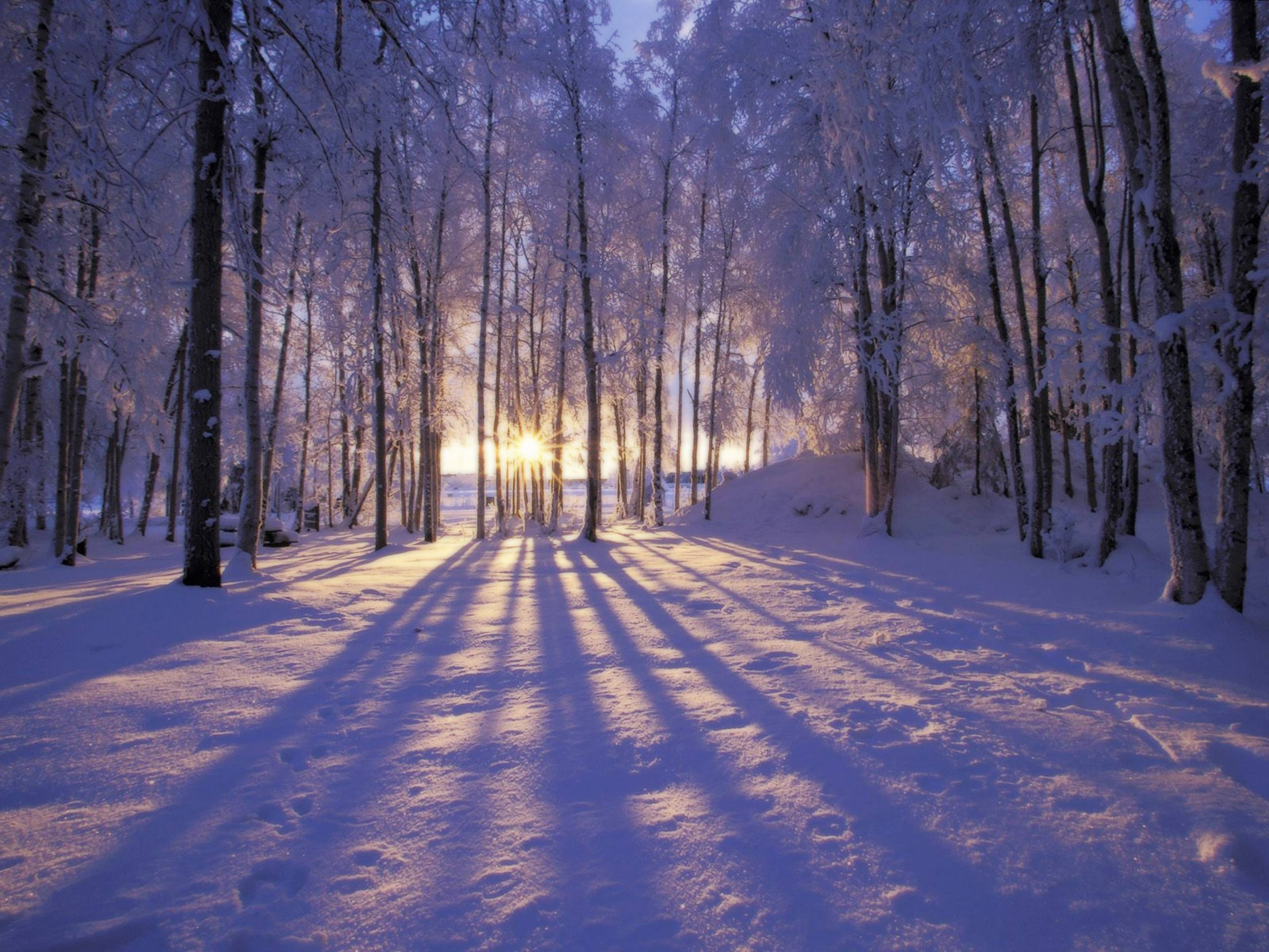 wallpapers desktop winter scenes - wallpaper cave