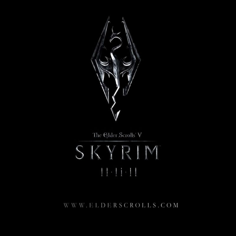 10 Top Skyrim Logo Wallpaper 1920X1080 FULL HD 1920×1080 For PC Background 2021 free download wallpapers et fonds decran skyrim the elder scrolls 5 1 800x800