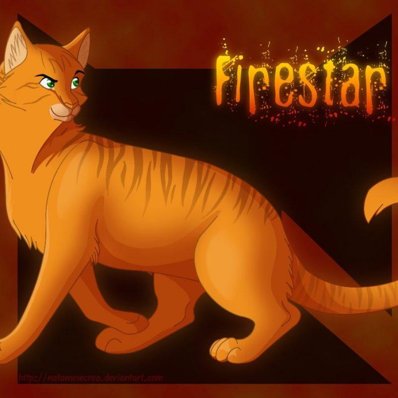 10 Most Popular Warrior Cats Wallpaper Firestar FULL HD 1080p For PC Background 2020 free download warriors firestarnatamesecrea on deviantart 800x800