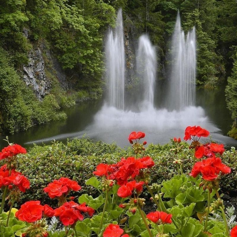 10 Best Waterfall And Flowers Wallpaper FULL HD 1080p For PC Desktop 2018 free download waterfalls nature waterfalls flowers waterfall wallpaper iphone for 800x800