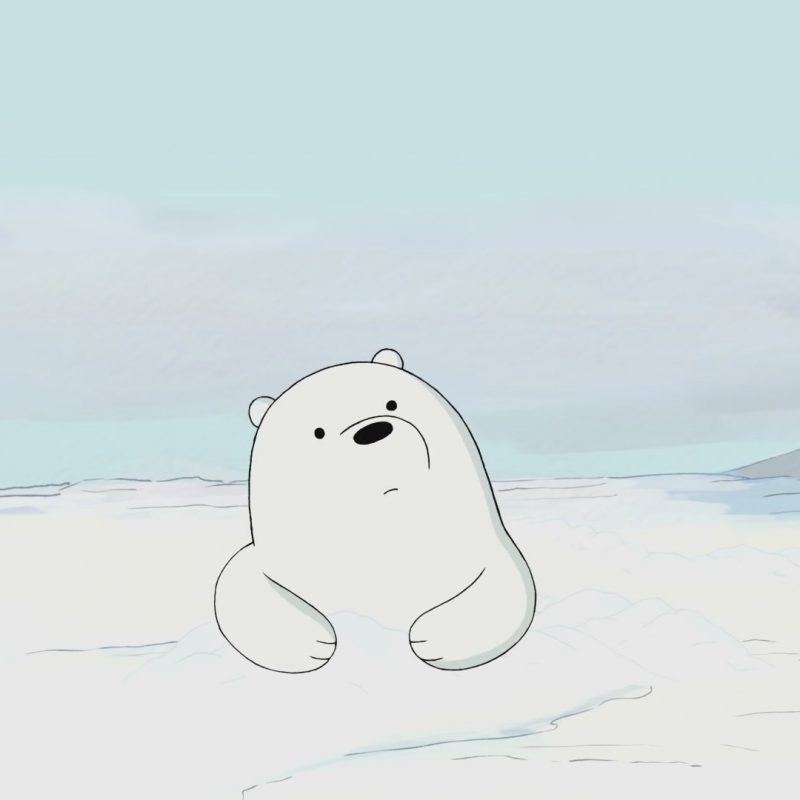 10 Top Ice Bear We Bare Bears Wallpaper FULL HD 1080p For PC Background 2018 free download we bare bears wallpaper 94 images 800x800