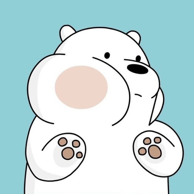 10 Top Ice Bear We Bare Bears Wallpaper FULL HD 1080p For PC Background 2020 free download we bare bearsf09f929e on twitter we bare bears wallpapers f09f9295 800x800