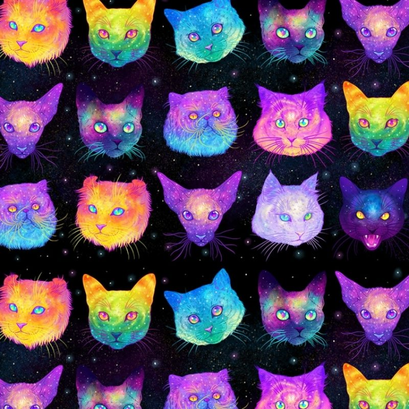 10 Most Popular Lisa Frank Desktop Wallpaper FULL HD 1080p For PC Desktop 2020 free download we have hypno frog recently hypno skull how about a wallpaper of 800x800