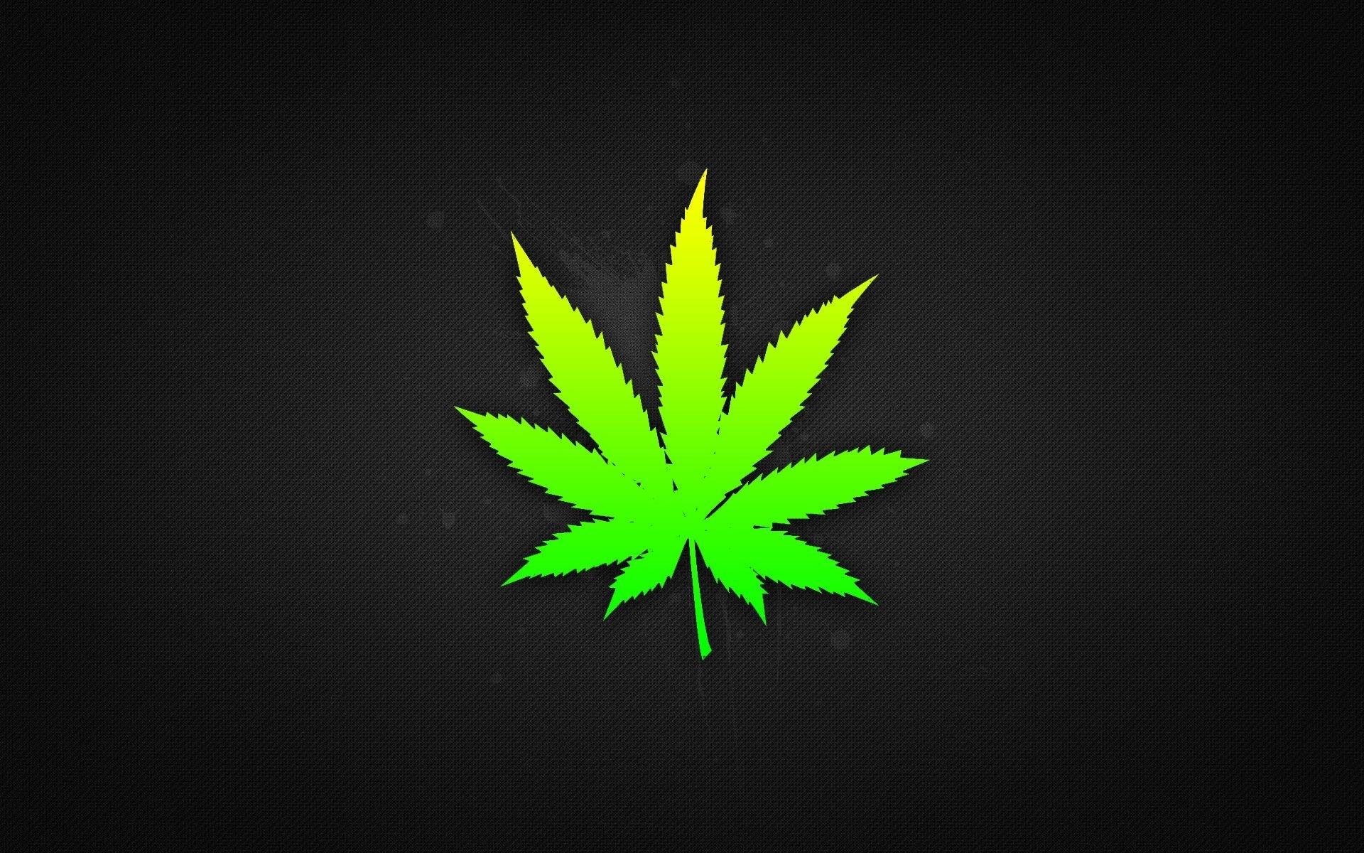 weed leaf wallpapers hd | weed | pinterest