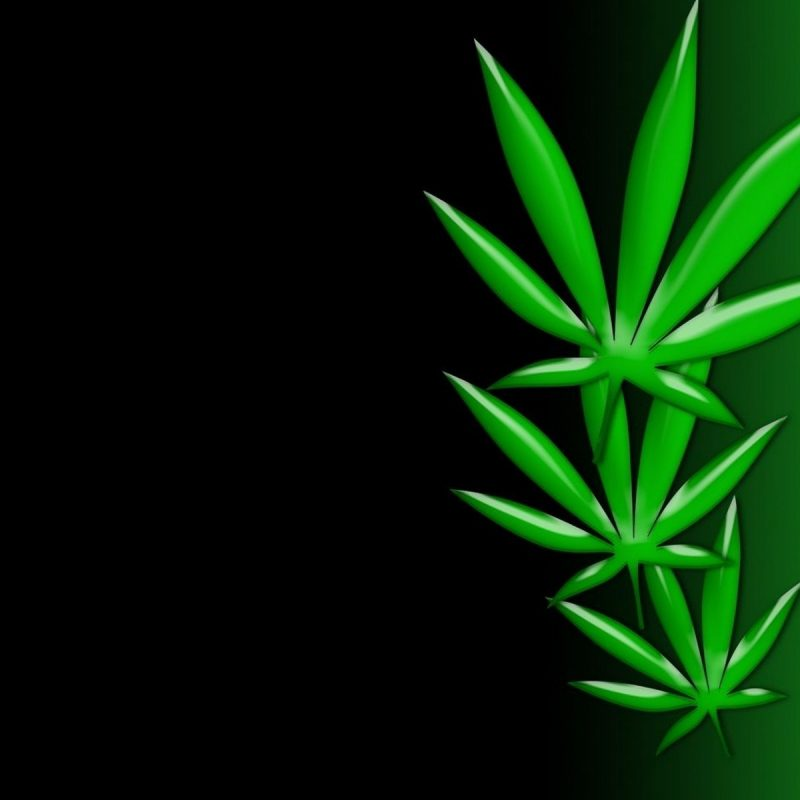 10 New Weed Leaf Wallpaper Hd FULL HD 1080p For PC Desktop 2020 free download weed poster wallpaper art weedpad wallpapers 800x800