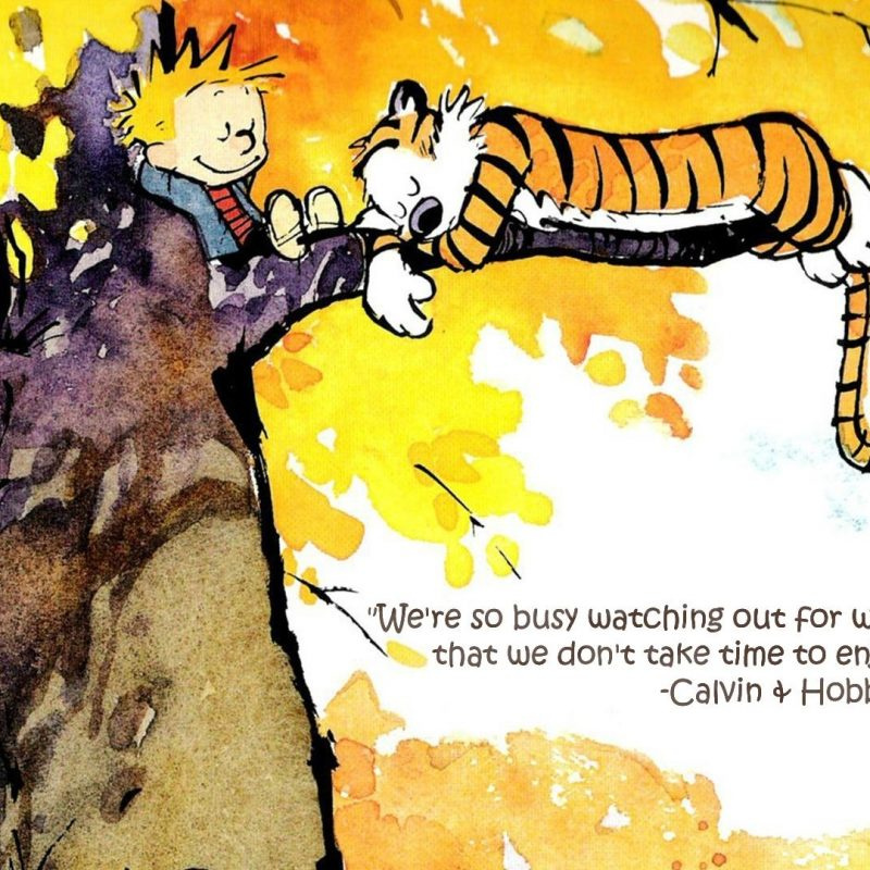 10 Latest Calvin And Hobbes Quotes Wallpaper FULL HD 1920×1080 For PC Desktop 2018 free download were so busy calvin hobbes little talks pinterest 800x800