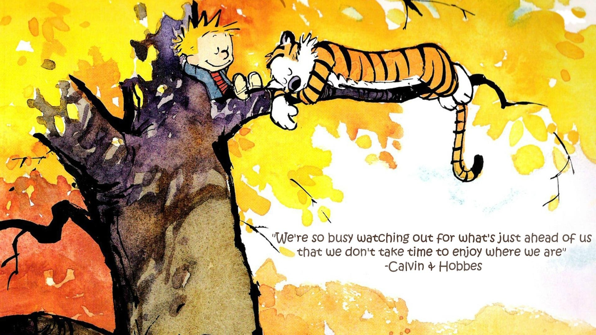10 Latest Calvin And Hobbes Quotes Wallpaper Full Hd 19201080 For