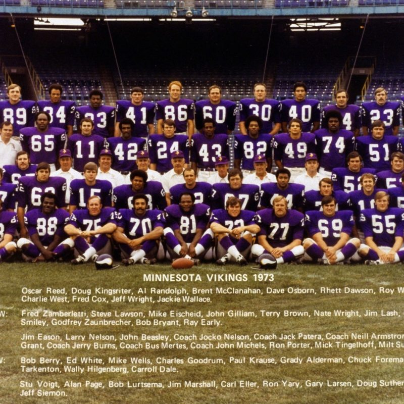 10 Latest Minnesota Vikings Team Pictures FULL HD 1920×1080 For PC Desktop 2021 free download wfl world football league players 800x800