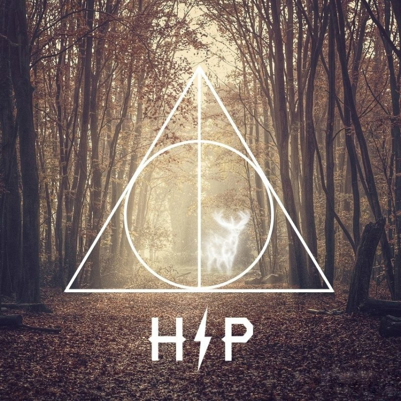 10 Most Popular Harry Potter Computer Backgrounds FULL HD 1080p For PC Background 2020 free download what is your favorite harry potter wallpaper harrypotter 800x800