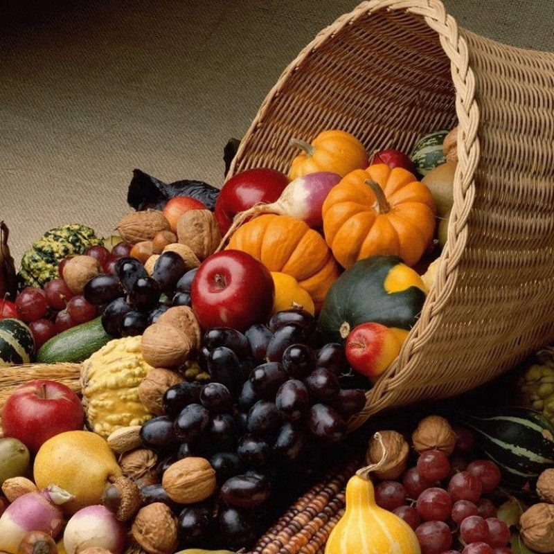 10 Top Desktop Wallpaper Thanksgiving Holiday FULL HD 1080p For PC Background 2018 free download when is thanksgiving day 2017 u s and canada the old farmers 800x800