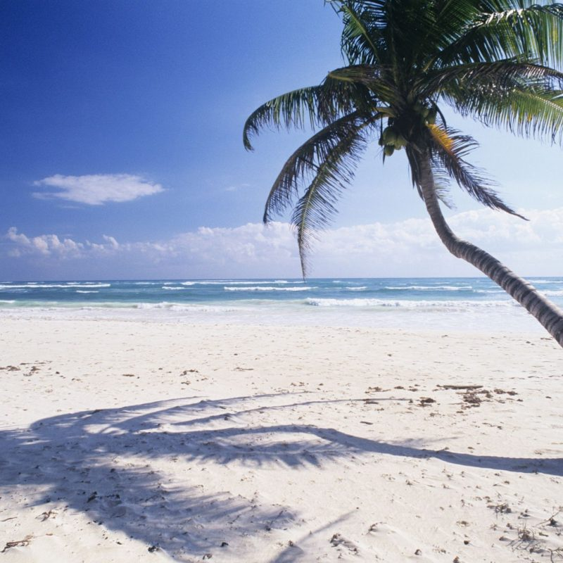 10 Most Popular Images Of White Sand Beaches FULL HD 1920×1080 For PC Background 2021 free download where to find mexicos best white sand beaches 800x800
