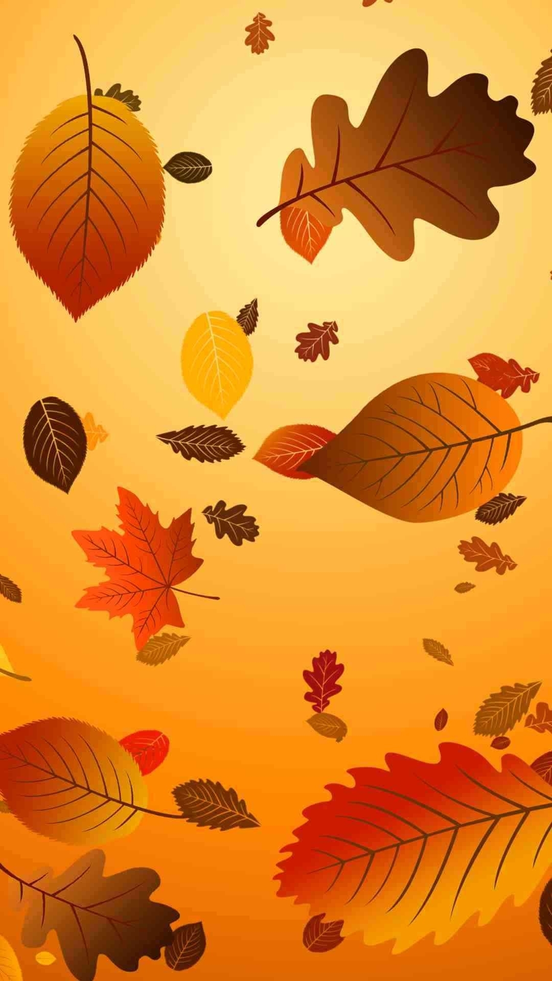 which 2015 thanksgiving iphone 6 plus wallpaper do you like