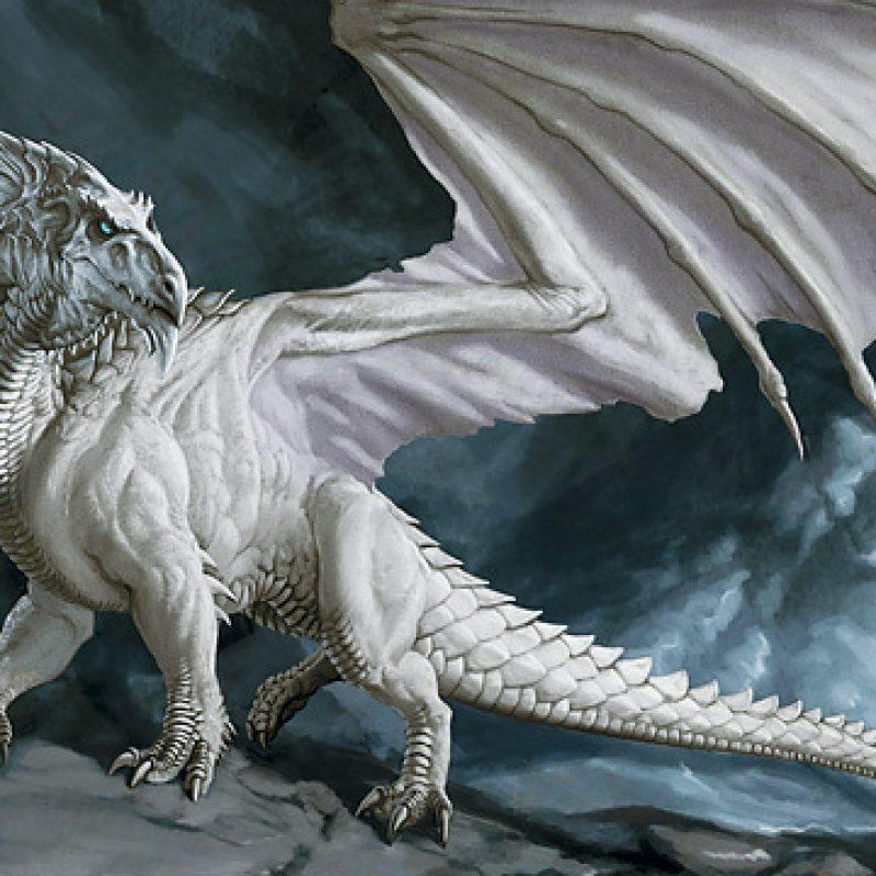 10 Top White Dragon Wallpaper Hd FULL HD 1920×1080 For PC Background 2021 free download white dragon wallpaper 76 images 800x800