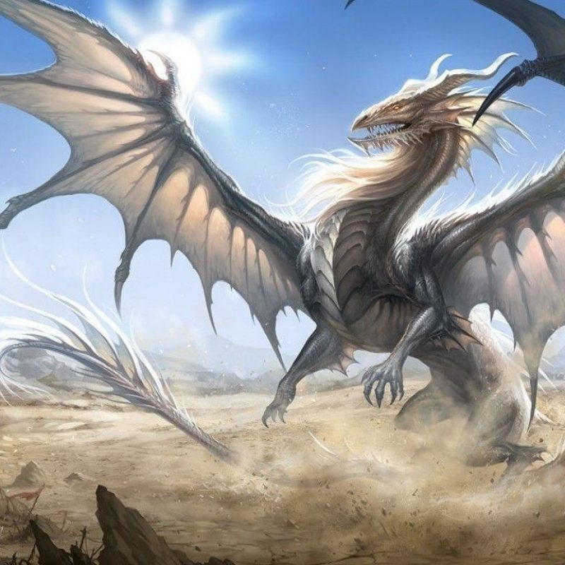 10 Top White Dragon Wallpaper Hd FULL HD 1920×1080 For PC Background 2021 free download white dragon wallpapers wallpaper cave 800x800