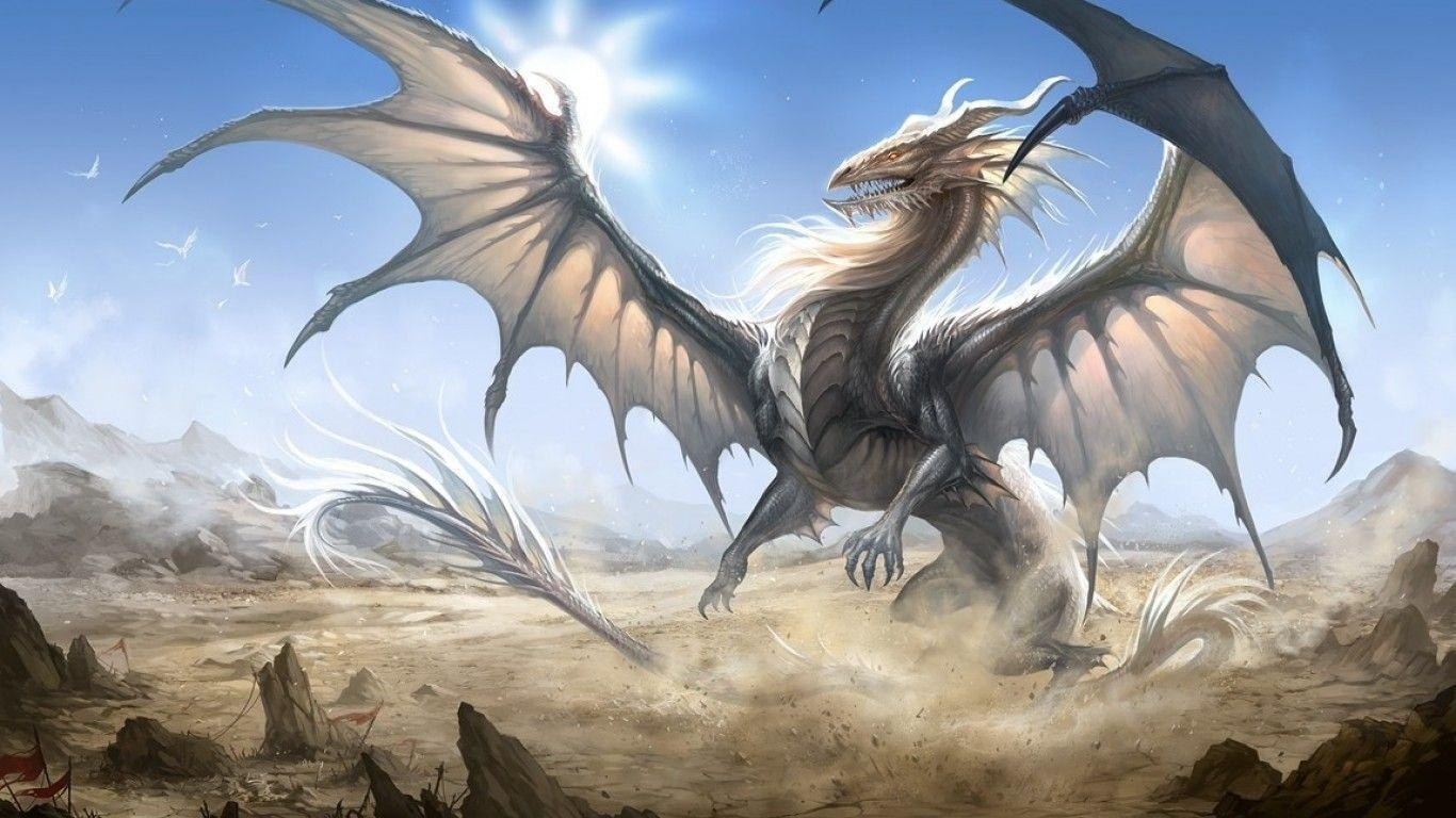 white dragon wallpapers - wallpaper cave