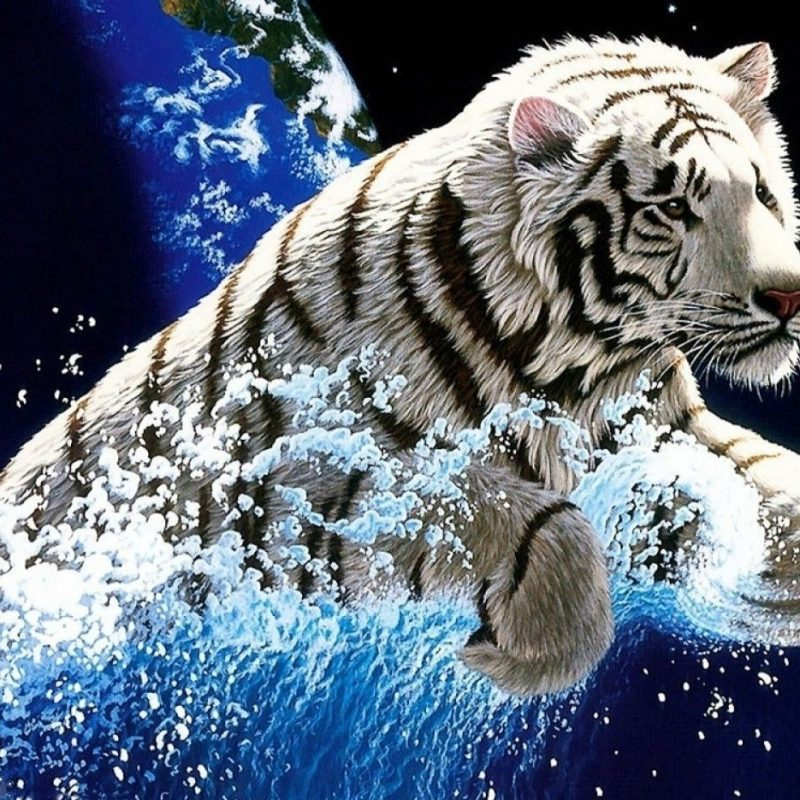 10 New White Tiger Wallpaper 3d Full Hd 1920 1080 For Pc Desktop