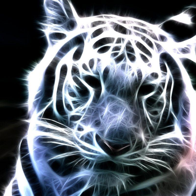 10 New White Tiger Wallpaper 3D FULL HD 1920×1080 For PC Desktop 2020 free download white tiger wallpaper 3d 800x800
