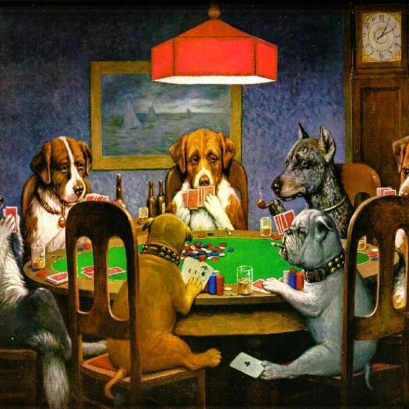 10 New Pictures Of Dogs Playing Cards FULL HD 1080p For PC Desktop 2018 free download %name