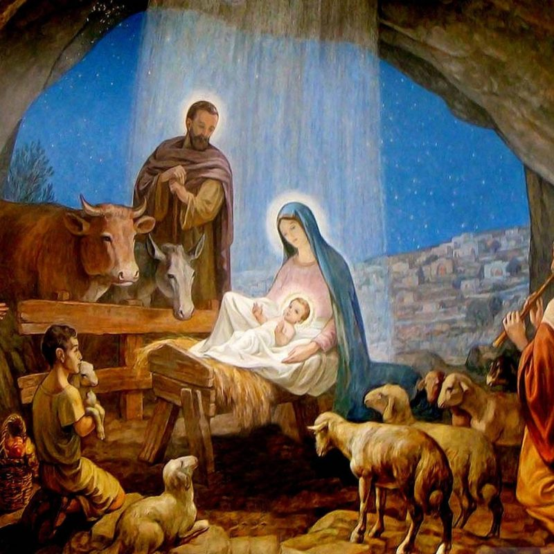 10 New Pictures Of Jesus Birth FULL HD 1920×1080 For PC Background 2021 free download why animals witnessed his birth ark animal blog 2 800x800