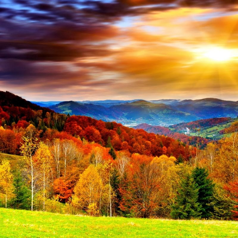 10 Most Popular Fall Wallpaper For Desktops FULL HD 1080p For PC Background 2020 free download widescreen beautiful scenery nautre hd desktop wallpaper beautiful 800x800