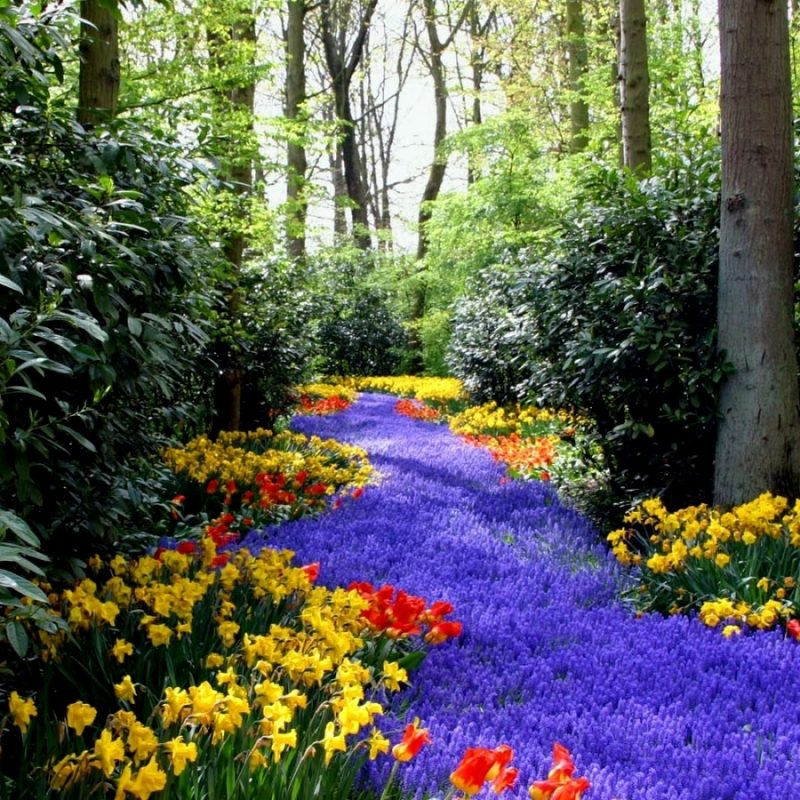 10 Best Spring Scenery Wallpaper Widescreen FULL HD 1080p For PC Background 2021 free download widescreen for spring computer black wallpaper wide hd pics mobile 800x800
