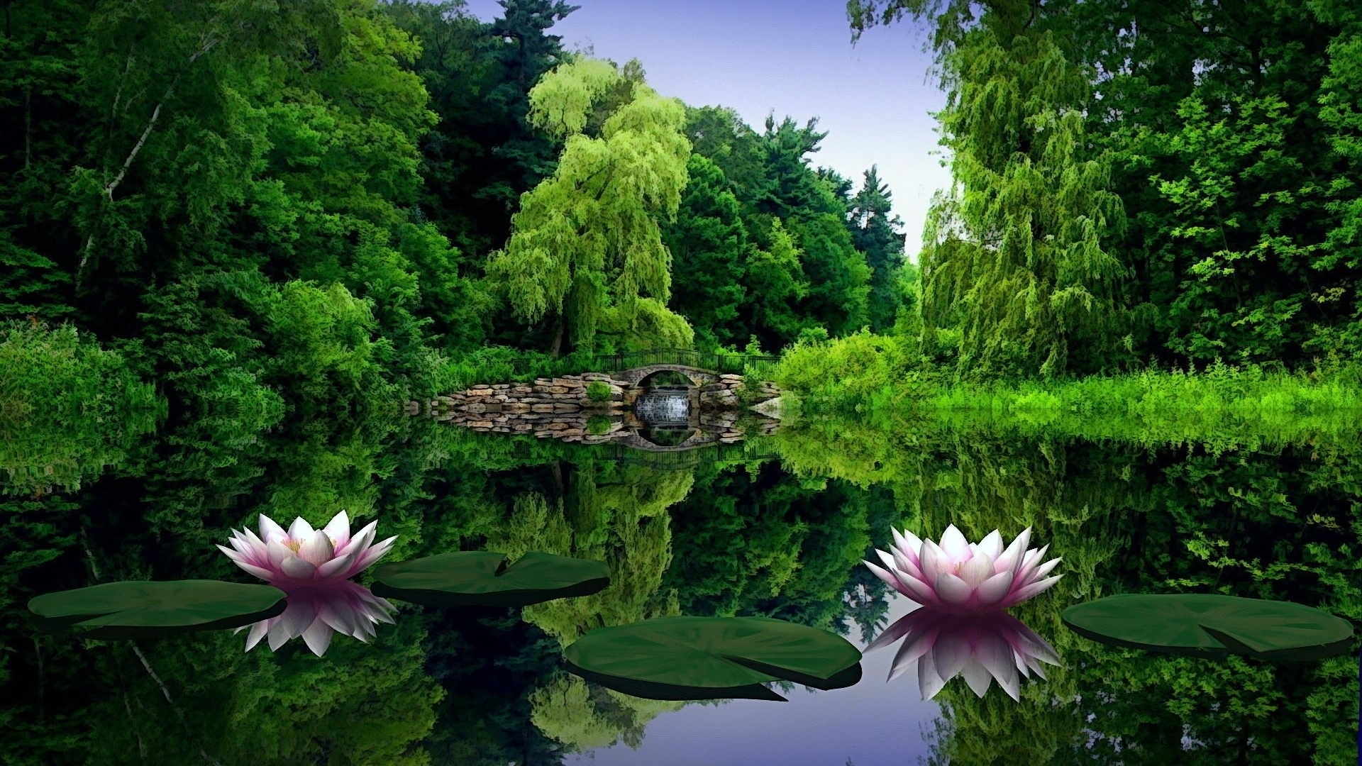 widescreen nature hd desktop backgrounds images with flower latest