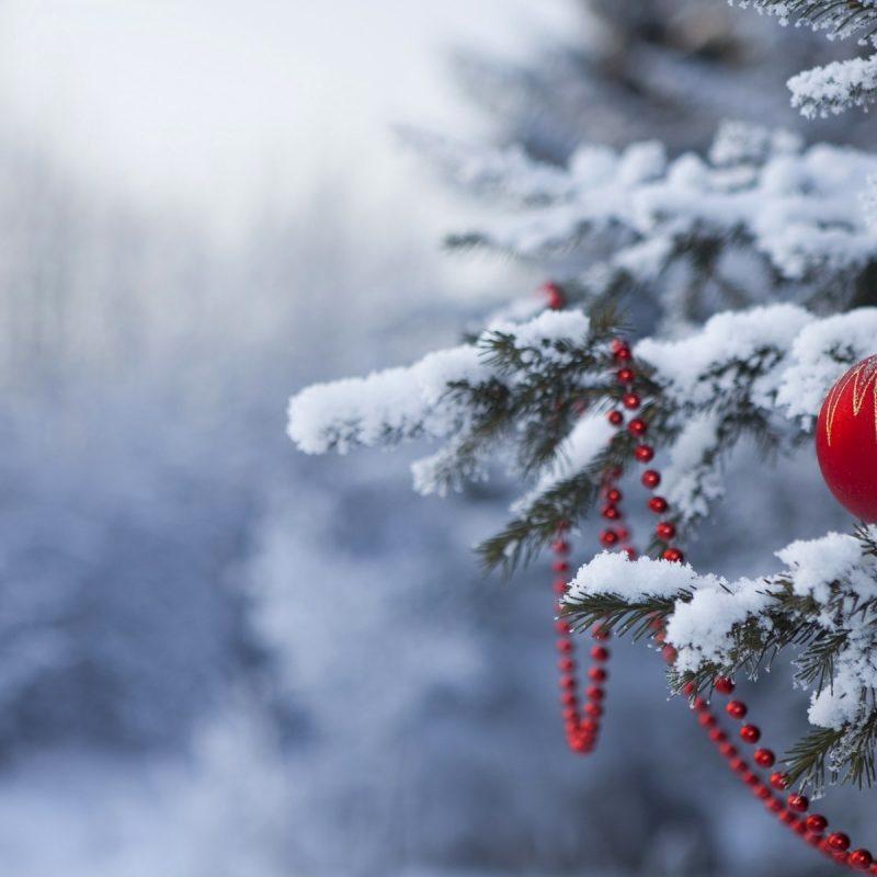 10 Best Free Winter Holiday Desktop Wallpaper FULL HD 1080p For PC Desktop 2018 free download winter and christmas desktop backgrounds hd wallpapers 800x800