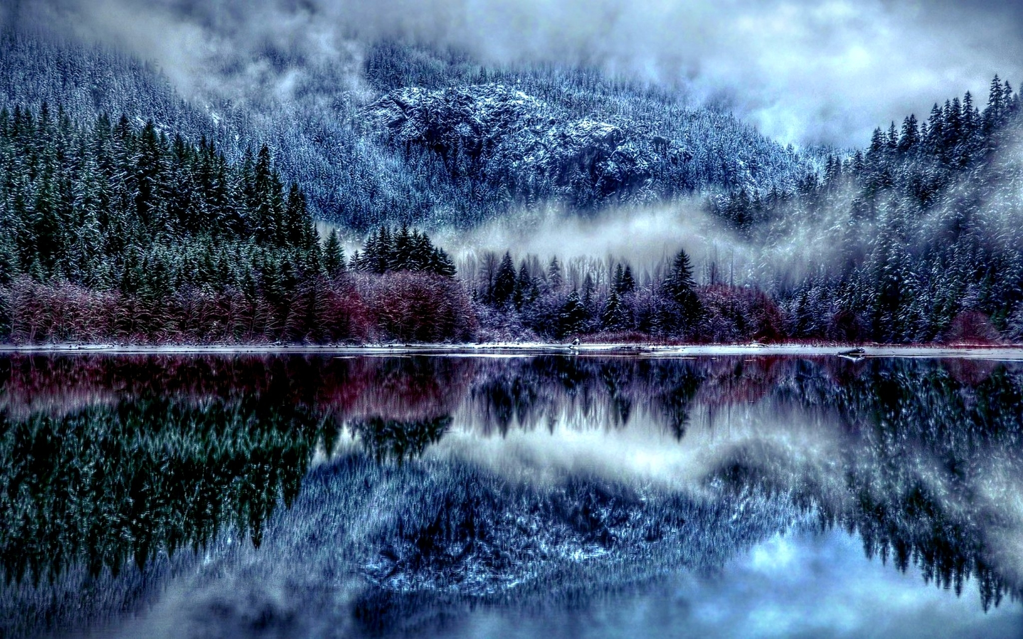 winter forest hd wallpaper - winter season desktop hd wallpapers