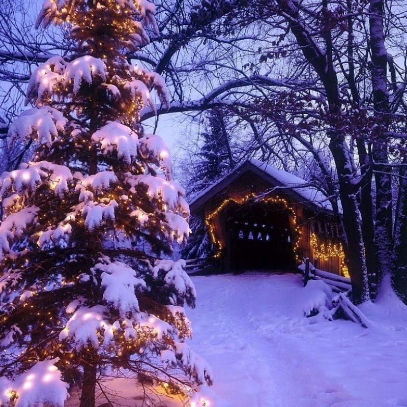 10 Best Free Winter Holiday Desktop Wallpaper FULL HD 1080p For PC Desktop 2018 free download winter holiday christmas tree wallpaper desktop background winter 800x800
