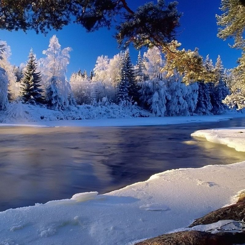 10 Most Popular Winter Landscape Desktop Wallpaper FULL HD 1080p For PC Background 2020 free download winter landscape wallpaper hd media file pixelstalk 2 800x800