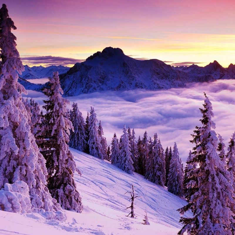10 Most Popular Winter Landscape Desktop Wallpaper FULL HD 1080p For PC Background 2018 free download winter landscape wallpapers wallpaper cave 800x800