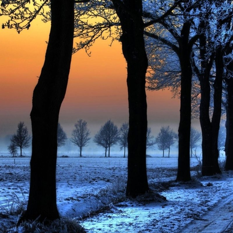 10 Most Popular Winter Landscape Desktop Wallpaper FULL HD 1080p For PC Background 2018 free download winter landscape with orange sky e29da4 4k hd desktop wallpaper for 4k 1 800x800