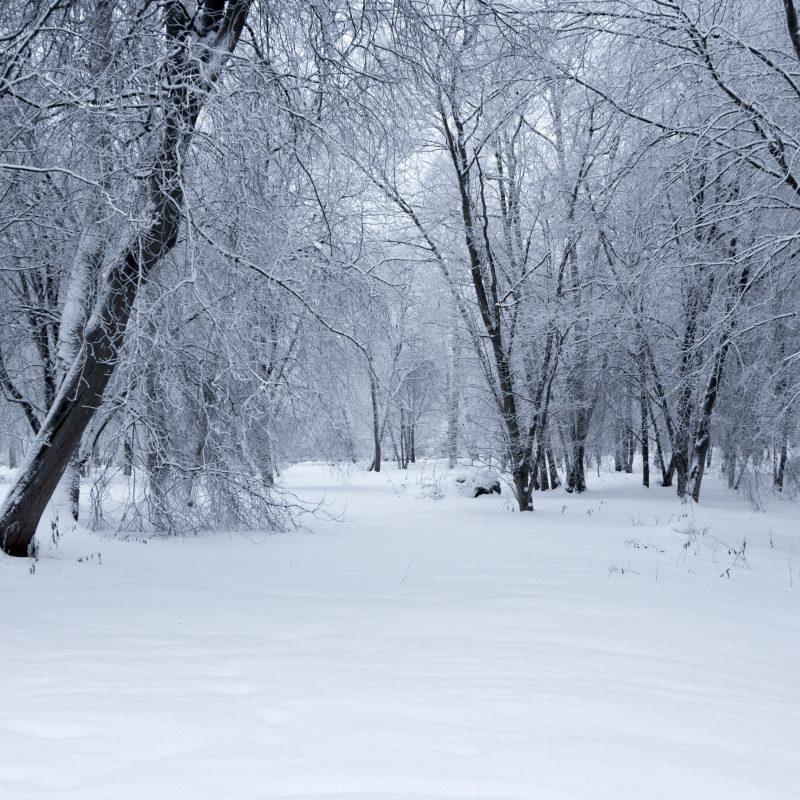 10 Most Popular Images Of Winter Landscapes FULL HD 1920×1080 For PC Desktop 2018 free download winter landscapejarzka on deviantart 800x800