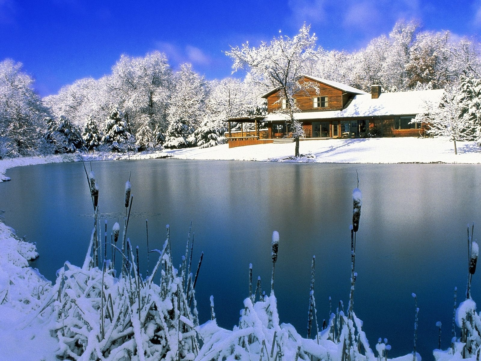 winter nature scenes wallpapers for free download about (1,539