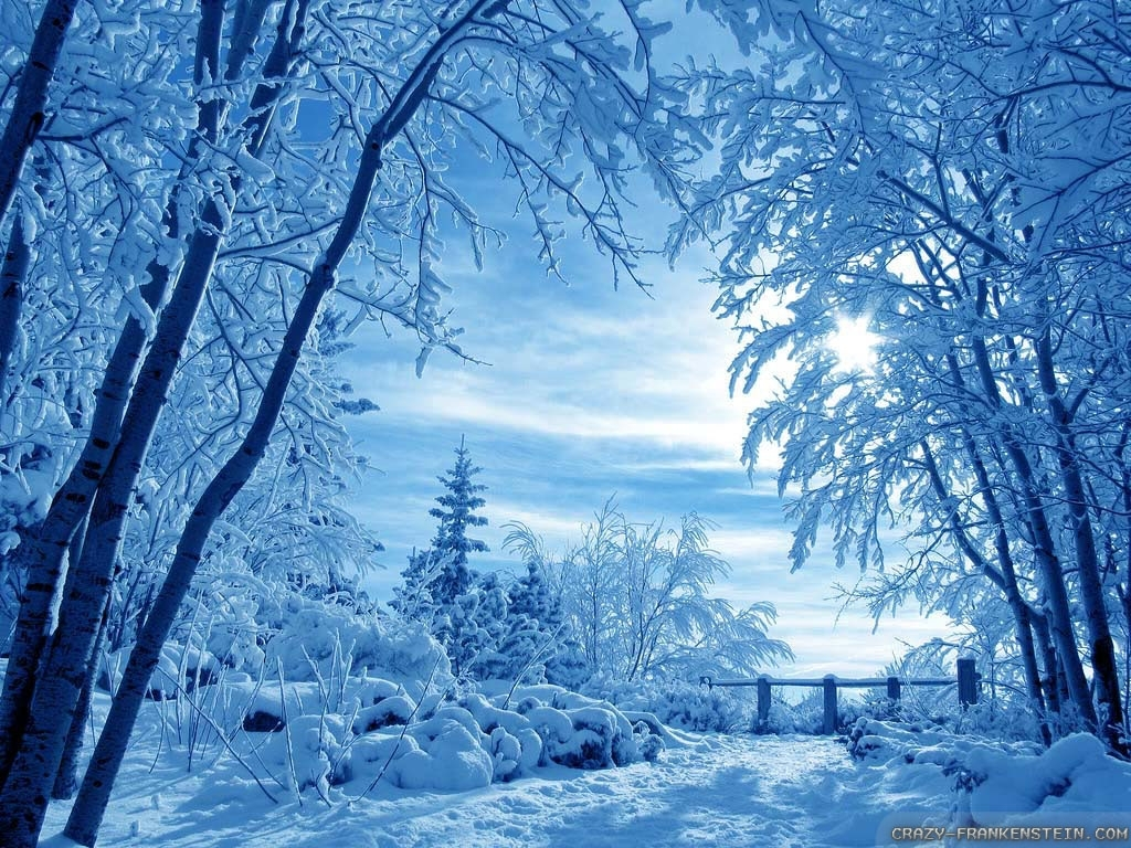 winter-nature-scenes-wallpapers-gallery-(68-plus)-pic-wpw508885