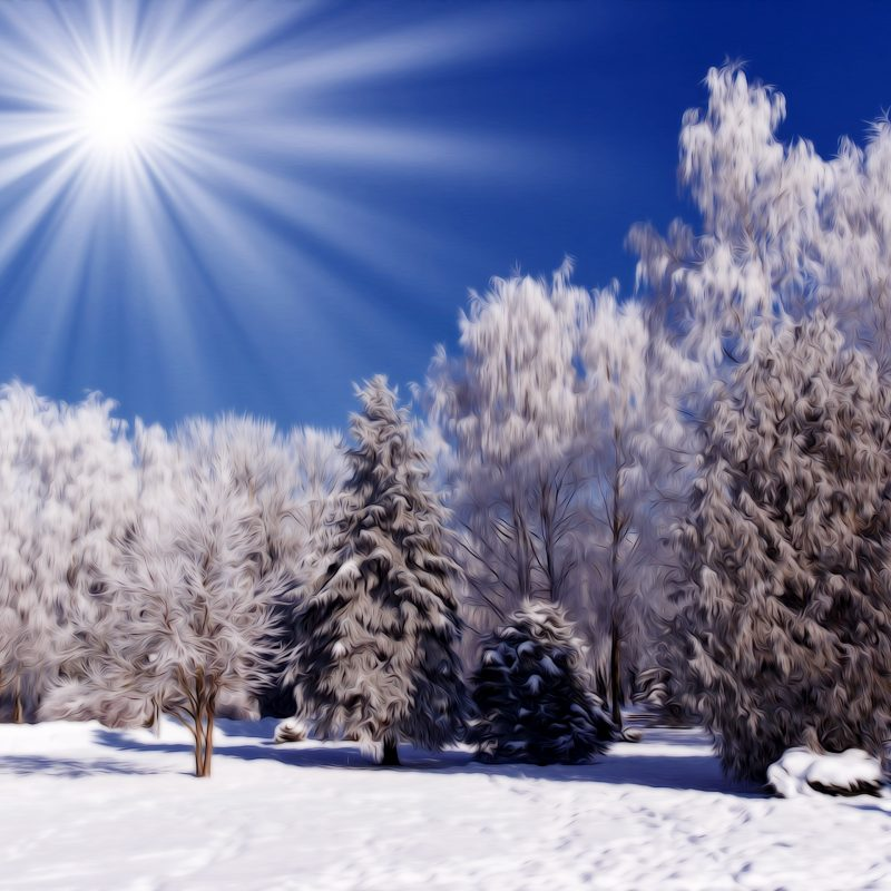 10 Most Popular Winter Nature Scenes Wallpaper FULL HD 1920×1080 For PC Background 2021 free download winter nature snow scene free desktop wallpapers for widescreen 800x800