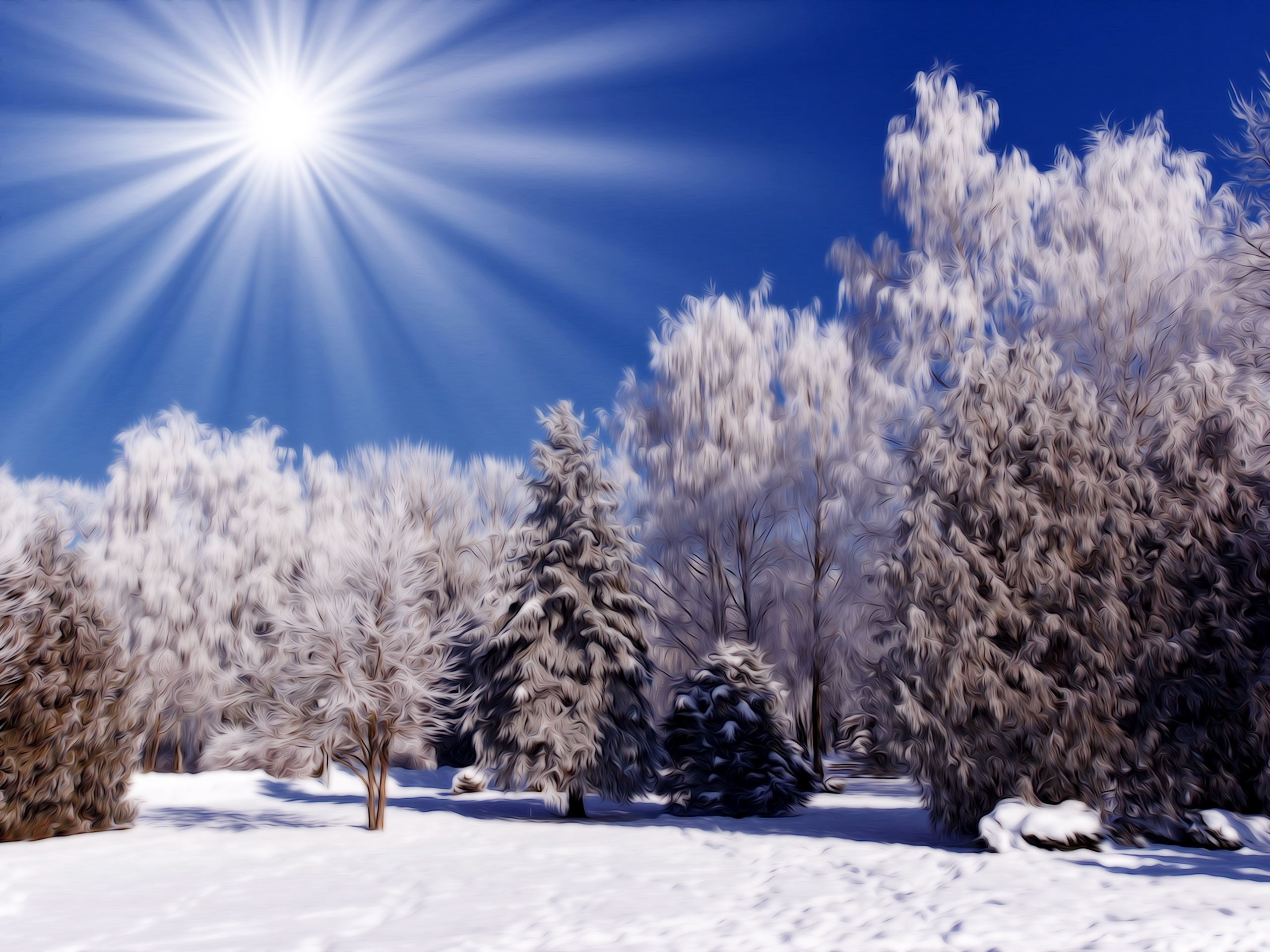 winter nature snow scene | free desktop wallpapers for widescreen