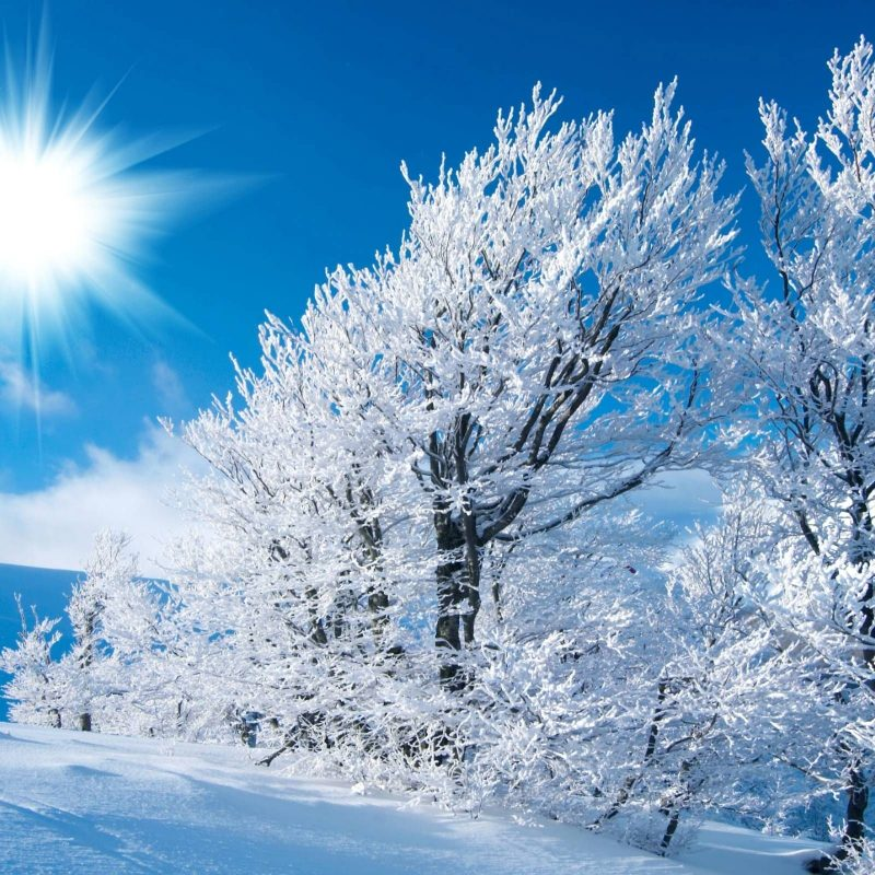 10 Top Desktop Wallpaper Winter Scenes FULL HD 1080p For PC Background 2018 free download winter nature wallpapers hd resolution iarna pinterest wallpaper 800x800