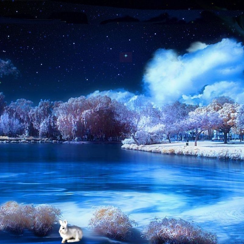 10 New Widescreen Winter Night Wallpapers FULL HD 1920×1080 For PC Desktop 2020 free download winter night wallpapers gallery 88 plus pic wpw504525 juegosrev 800x800