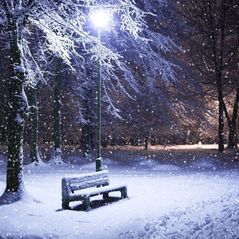 10 New Widescreen Winter Night Wallpapers FULL HD 1920×1080 For PC Desktop 2020 free download winter night wallpapers wallpaper 3d wallpapers pinterest 800x800