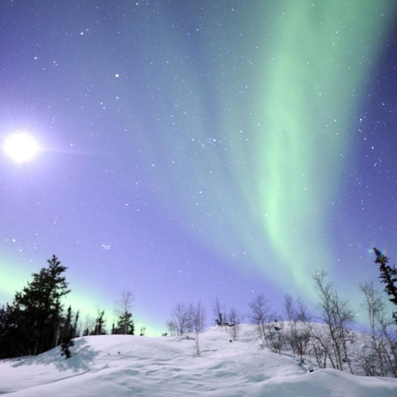 10 New Winter Northern Lights Wallpaper FULL HD 1920×1080 For PC Desktop 2020 free download winter northern lights in the sky hd wallpaper 800x800