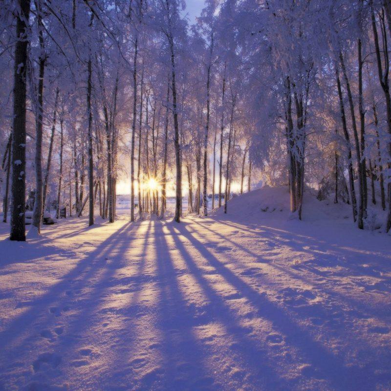 10 New Winter Scenes For Desktop Backgrounds FULL HD 1080p For PC Background 2020 free download winter scene desktop backgrounds wallpaper cave 800x800