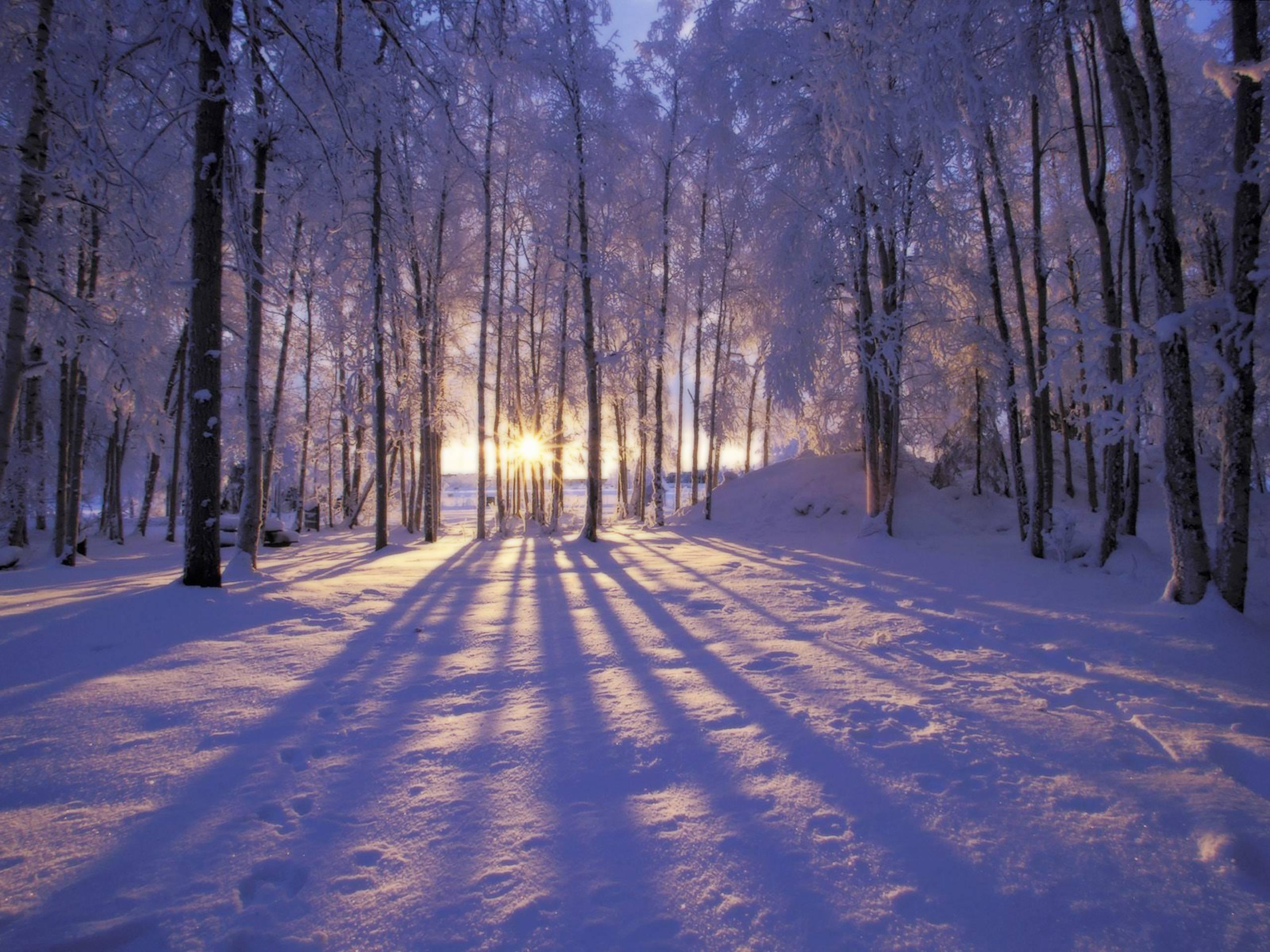 winter scene desktop backgrounds - wallpaper cave