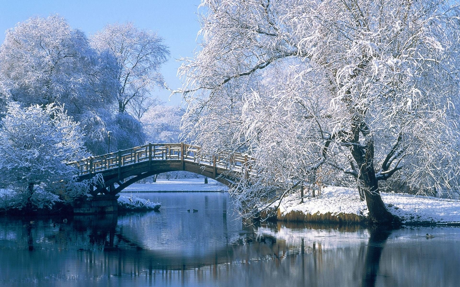 winter scenes for desktop wallpapers - hd wallpapers inn | bridges