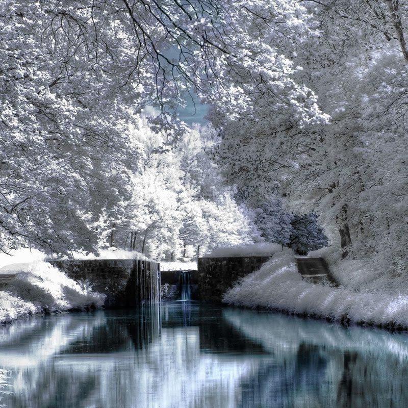 10 Top Winter Scene Desktop Wallpaper FULL HD 1080p For PC Desktop 2021 free download winter scenes for desktop winter season winter scenery hd 1 800x800