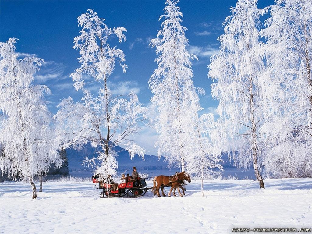 winter scenes wallpapers - crazy frankenstein