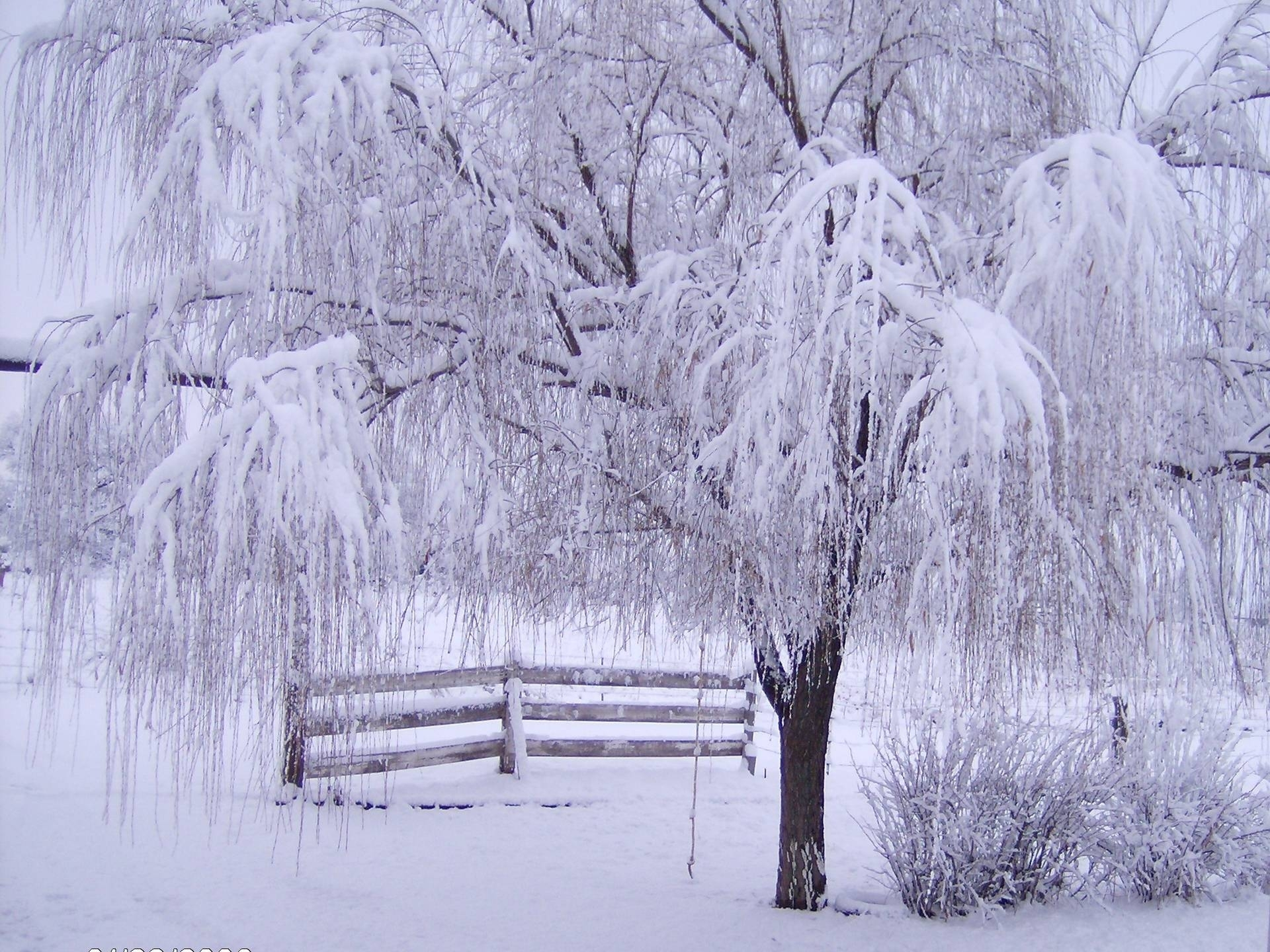 winter screensavers and wallpapers - wallpaper cave