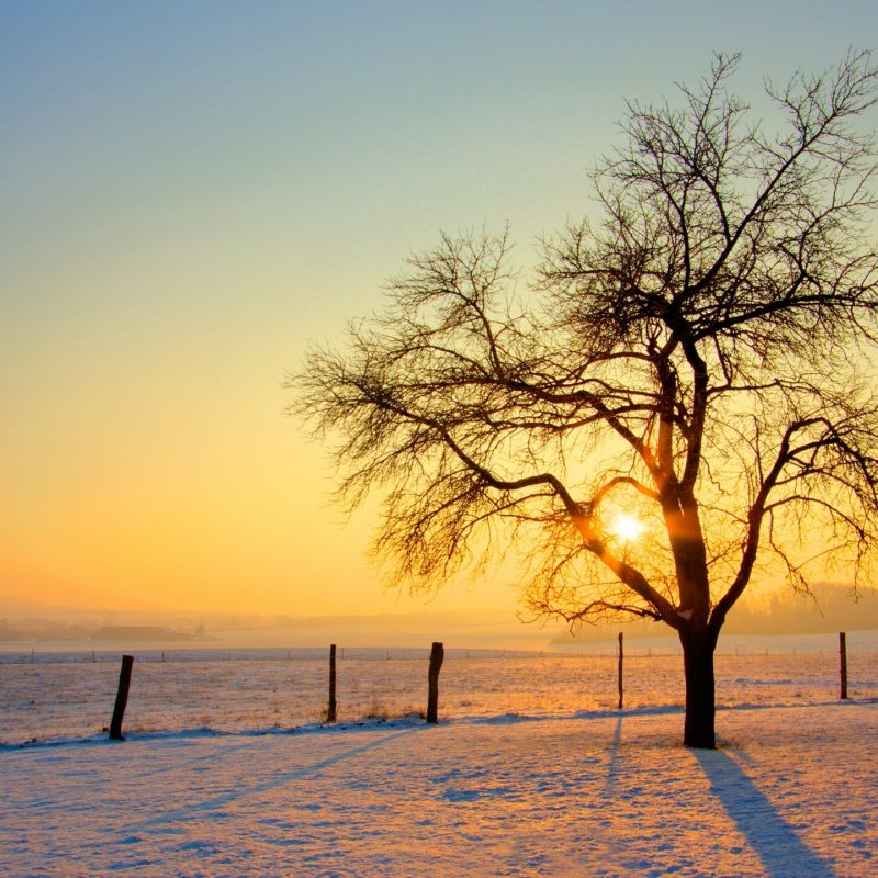 10 New Winter Sunset Desktop Backgrounds FULL HD 1920×1080 For PC Desktop 2018 free download winter sunset e29da4 4k hd desktop wallpaper for 4k ultra hd tv e280a2 wide 800x800