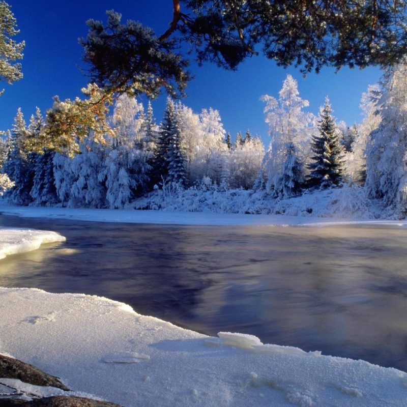 10 Most Popular Winter Wallpaper 1920X1080 FULL HD 1920×1080 For PC Desktop 2020 free download winter wallpapers best wallpapers 800x800